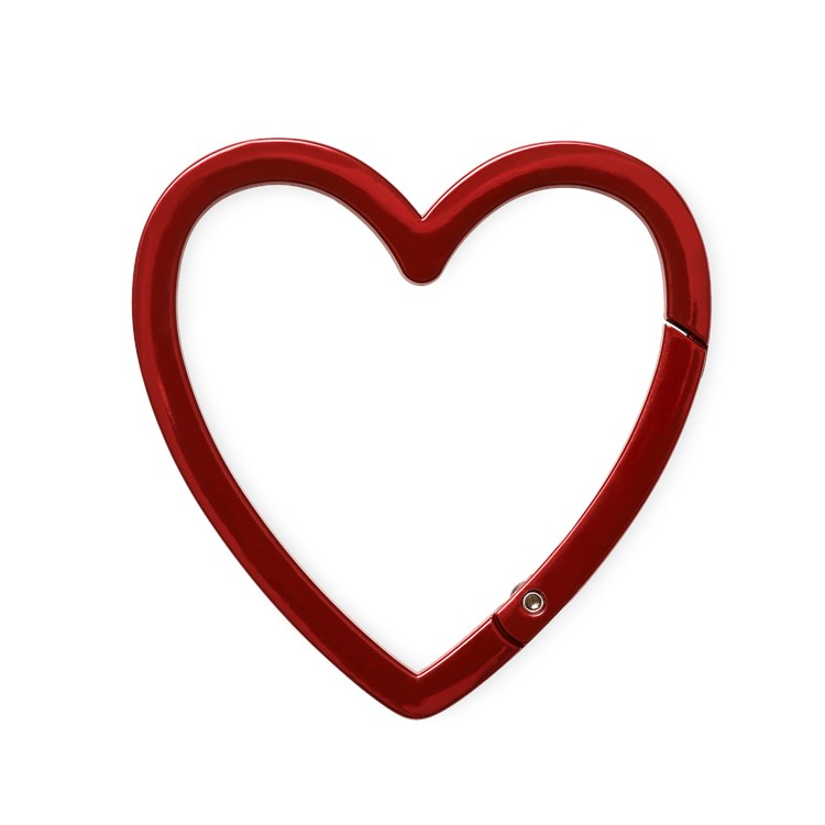 Smart At Heart Carabiner