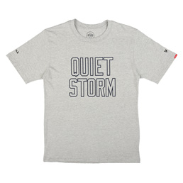 WTAPS Quiet Storm T-Shirt Grey