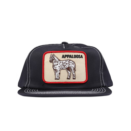 BC Patch Hat Navy