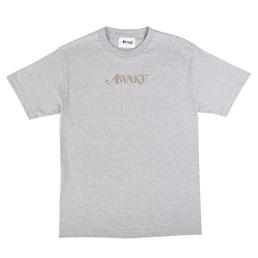 Awake NY Metallic Foil Logo T-Shirt Grey